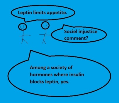Leptin Insulin Cartoon