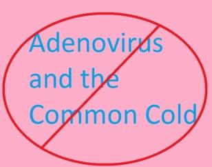 Adenovirus and the Common Cold