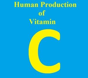 Human C