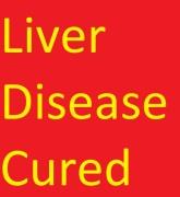 Liver Pic